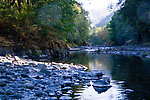 From the Wilson River in Oregon.