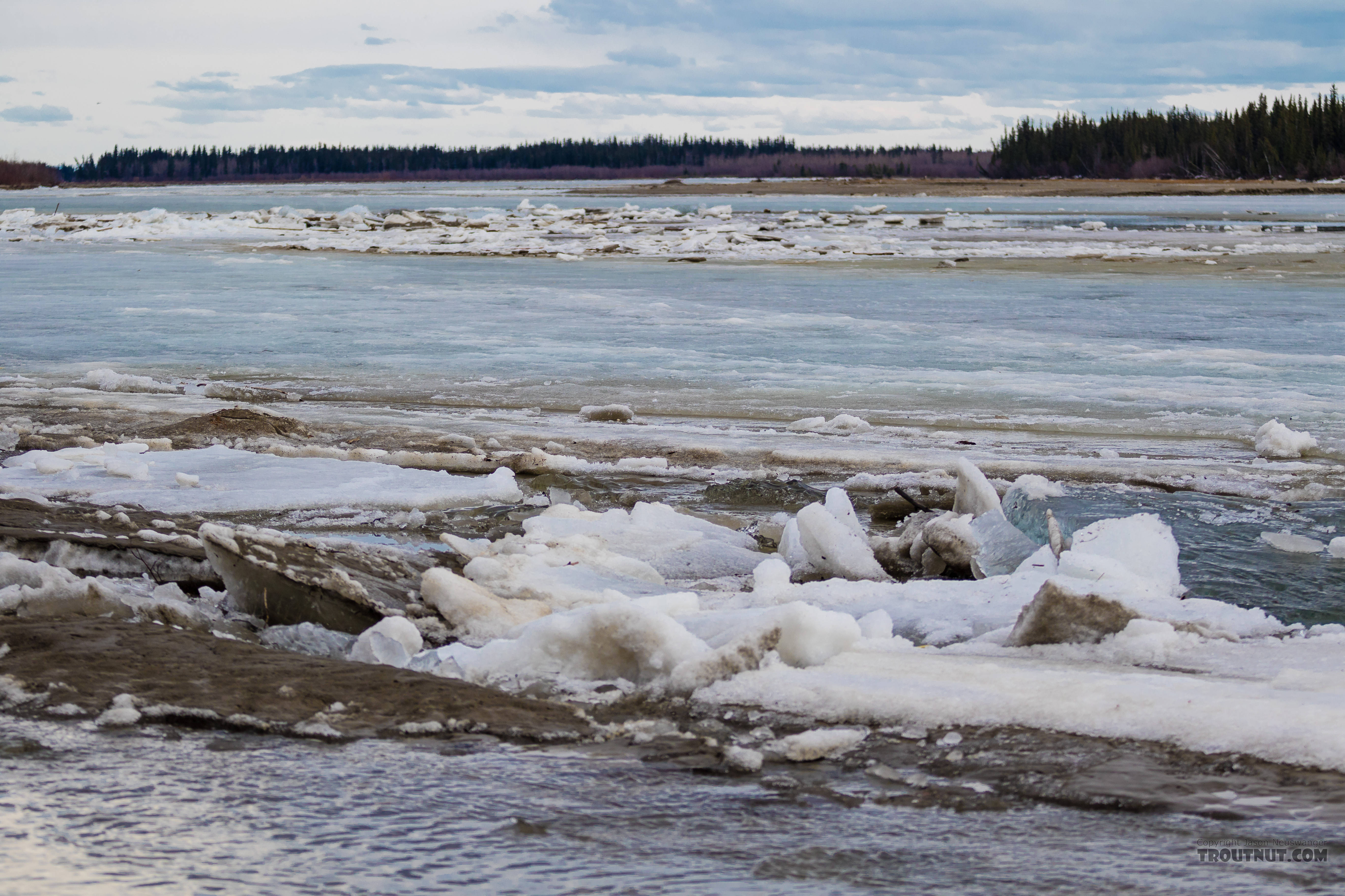 Ice breakup on the Tanana From the Tanana River in Alaska.