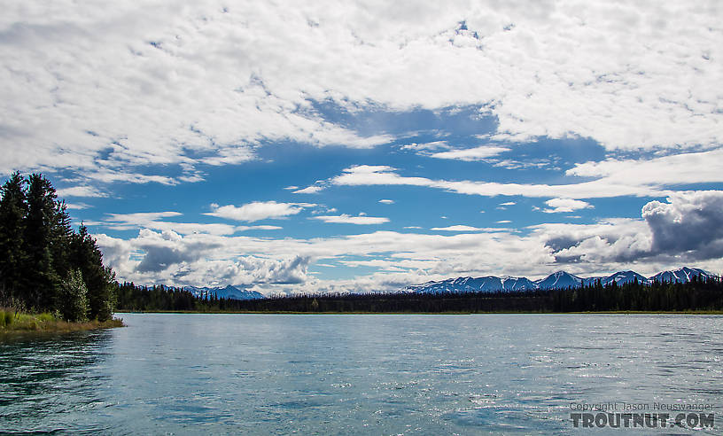 View to the Kenai Mountains from the river below Skilak Lake From the Kenai River in Alaska.