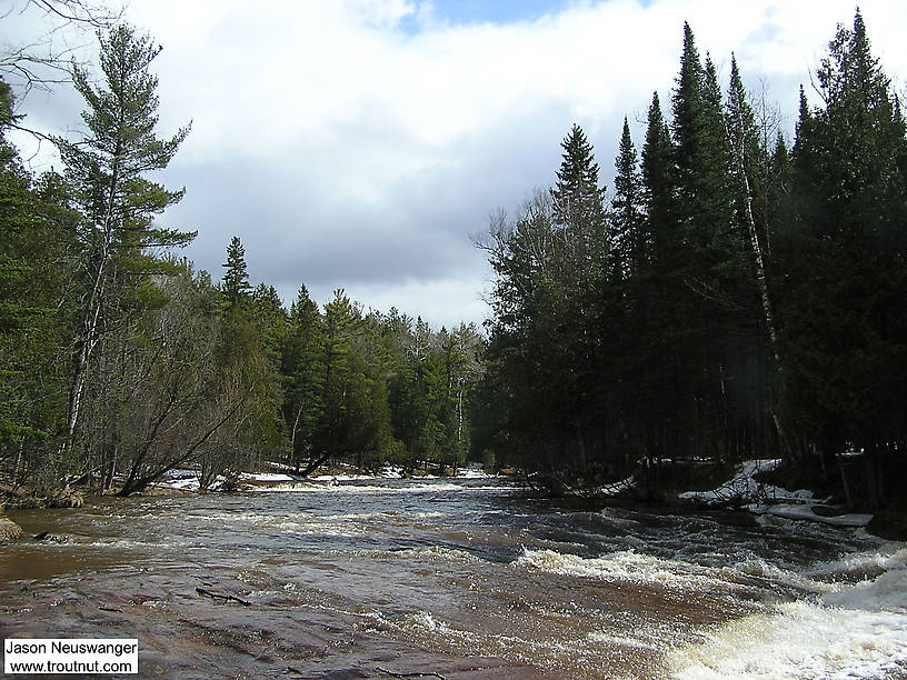 Spring rains have this steelhead river up and roaring. From the Bois Brule River in Wisconsin.