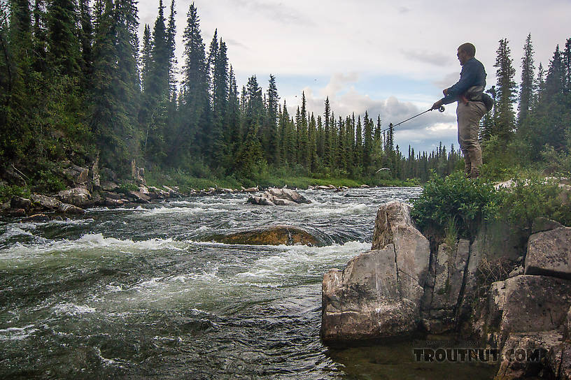 Josh fishing a good hole From the Gulkana River in Alaska.
