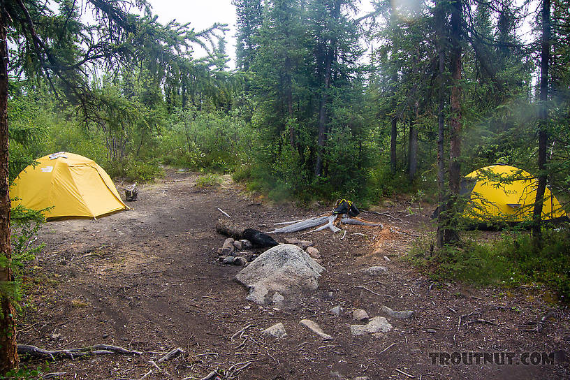 Our campsite. Although nobody in their right mind walks the trail we took in to the river, the fishing spot and campsite see quite a bit of traffic from people doing a popular 4-5 day float trip. From the Gulkana River in Alaska.