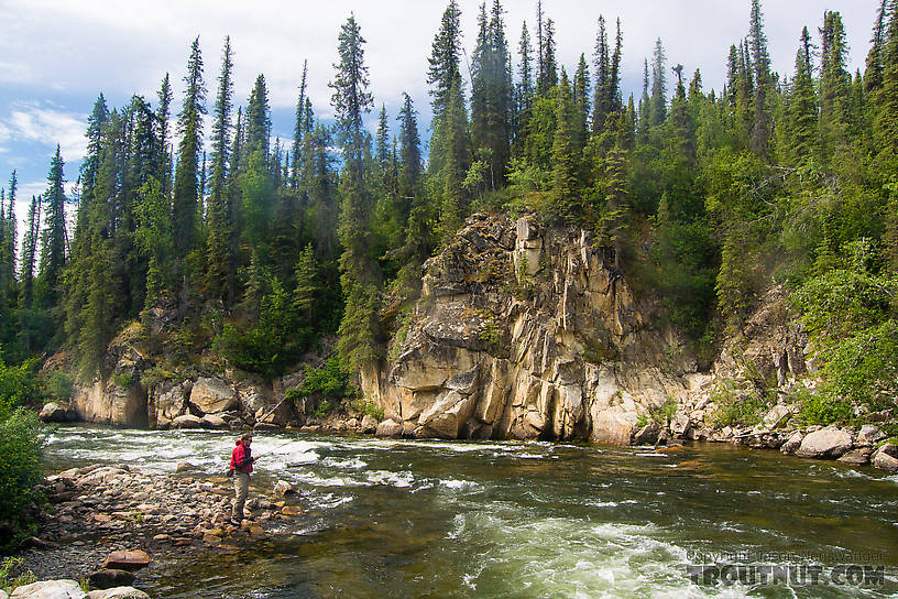 Josh fishing the tail of a big pool in the rapids From the Gulkana River in Alaska.