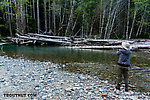 My wife Lena casting to a promising pool. From the South Fork Sauk River in Washington.