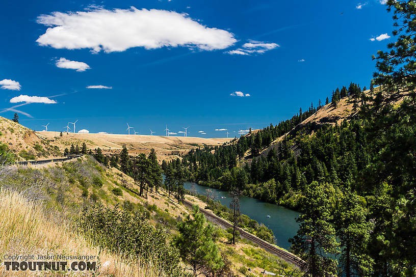 Yakima River from WA highway 10 near Teanaway, with rafters floating down. From the Yakima River in Washington.