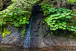 Tiny tributary trickling in over the bedrock From Mystery Creek # 200 in Washington.
