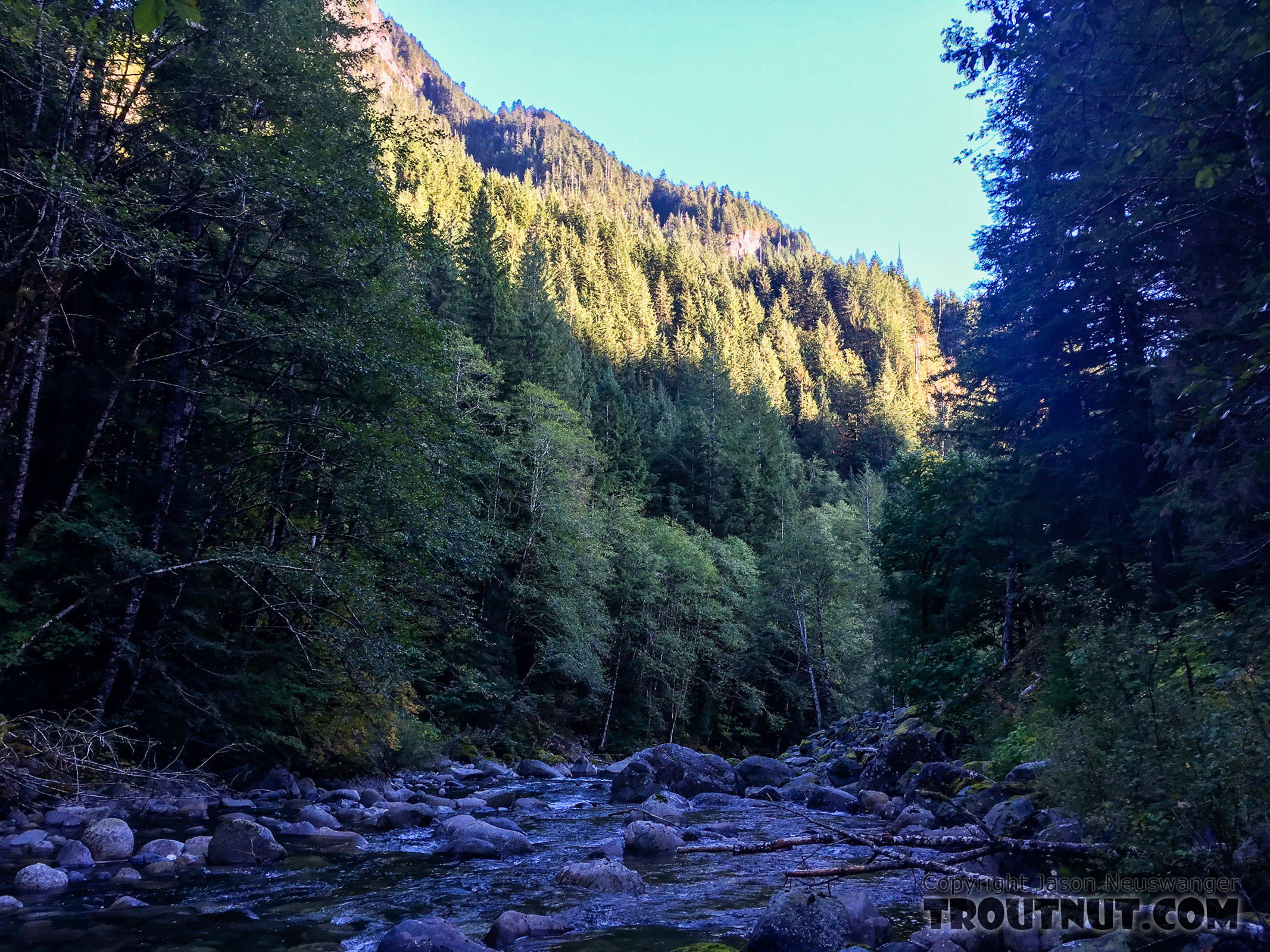 From the Taylor River in Washington.
