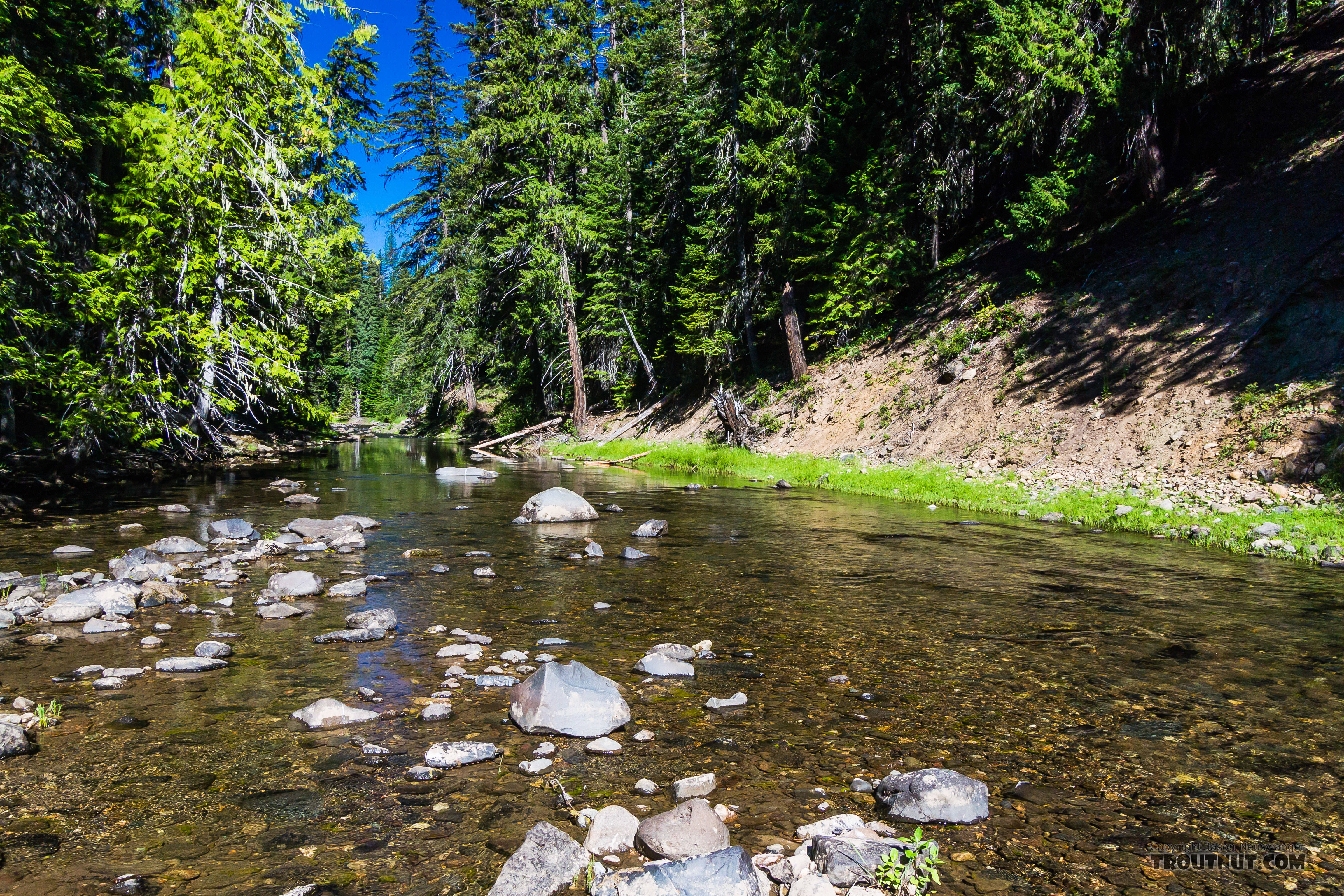 From the Little Naches River in Washington.