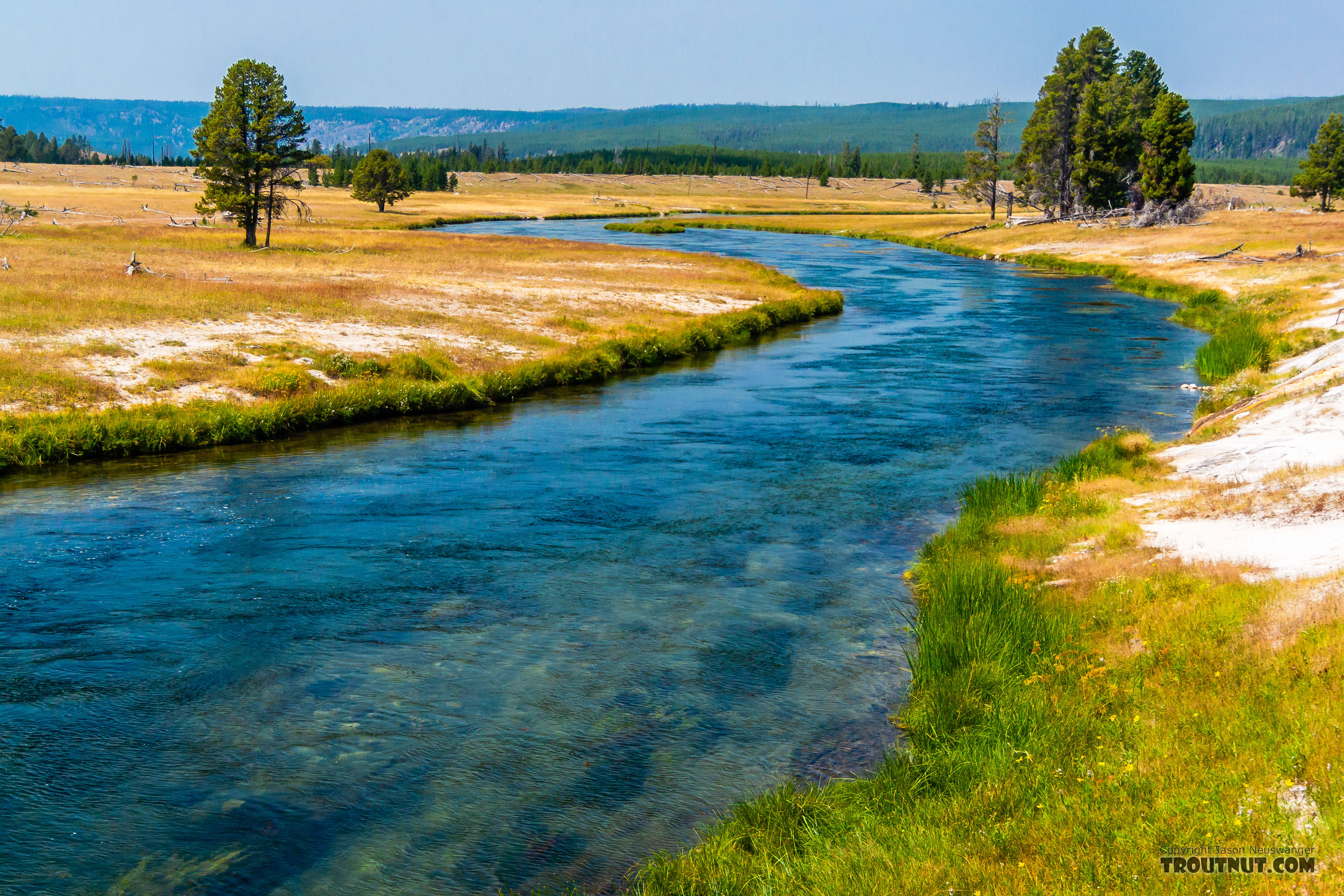 """The """"Fountain Flats"""" stretch of the Firehole was fishable in the morning after an uncharacteristically cold August night. From the Firehole River in Wyoming."""