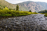 From the Madison River in Montana.