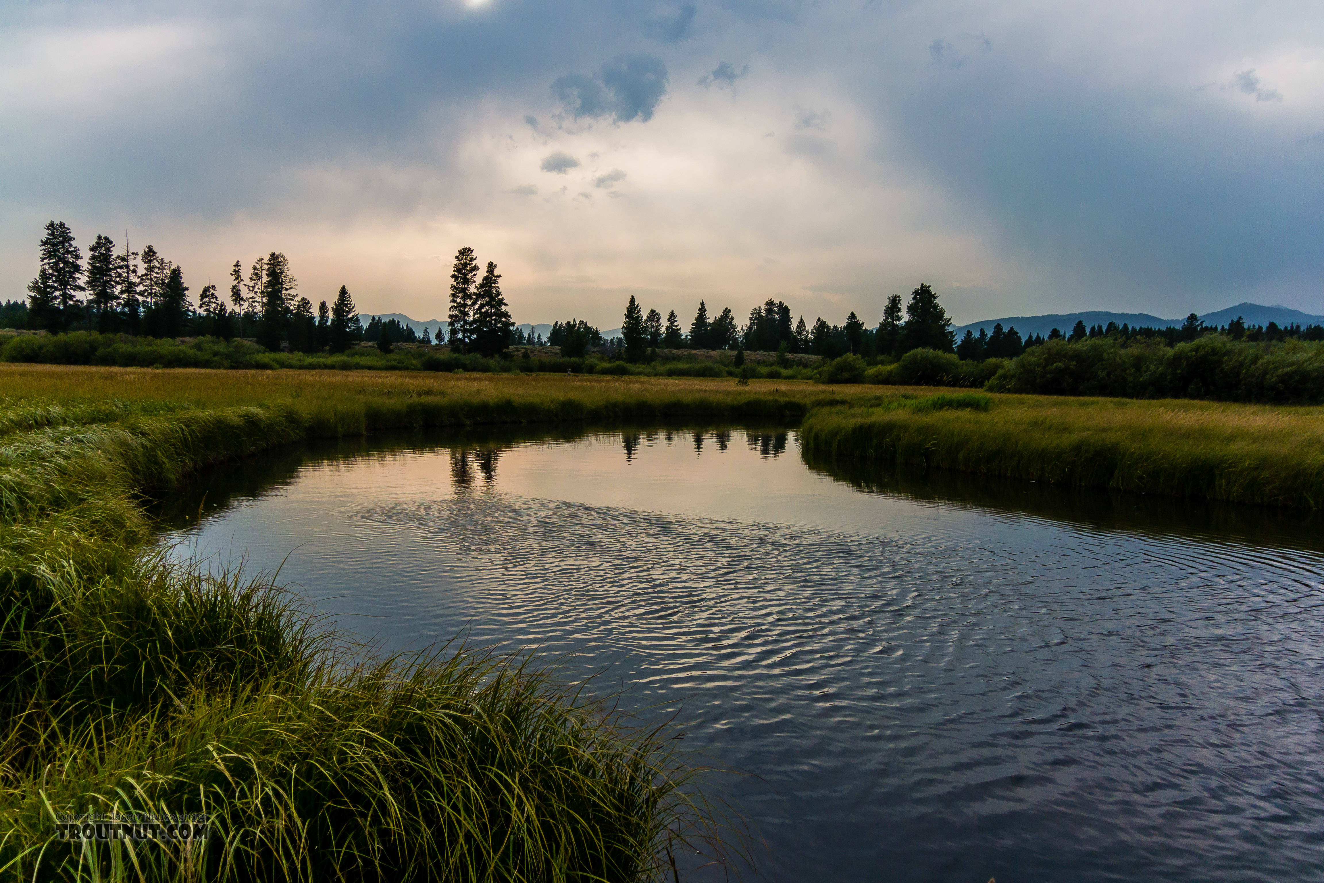 From Duck Creek in Montana.