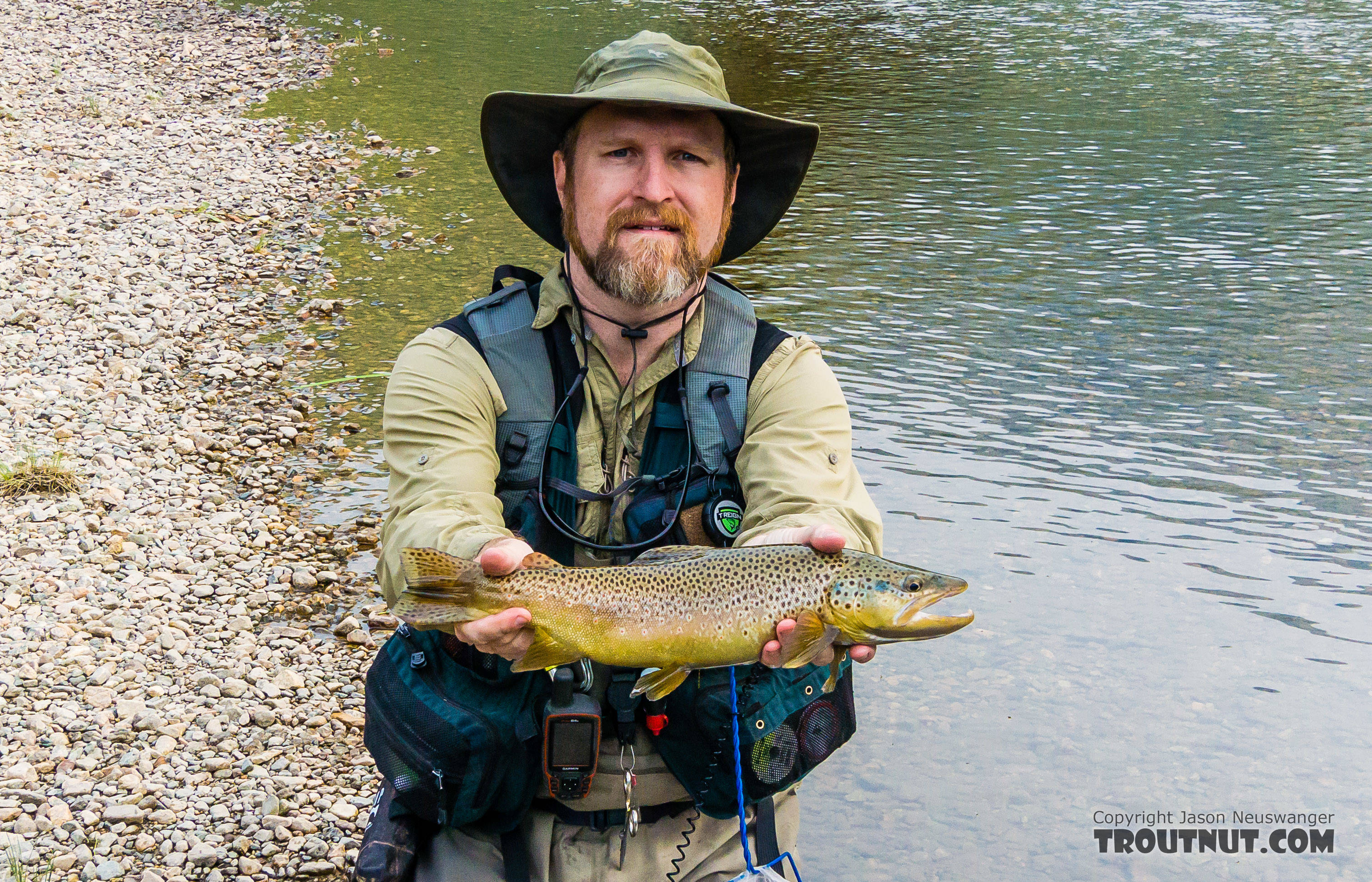 One of the nicest brown trout of the trip From Mystery Creek # 227 in Montana.