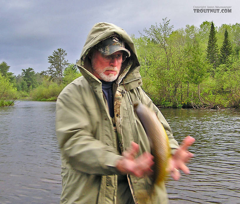 """My dad attempts to pose with a 20-inch brown trout he just caught.  We took a """"good"""" picture first, but I think this one is much better! From the Namekagon River, Guillotine Hole in Wisconsin."""