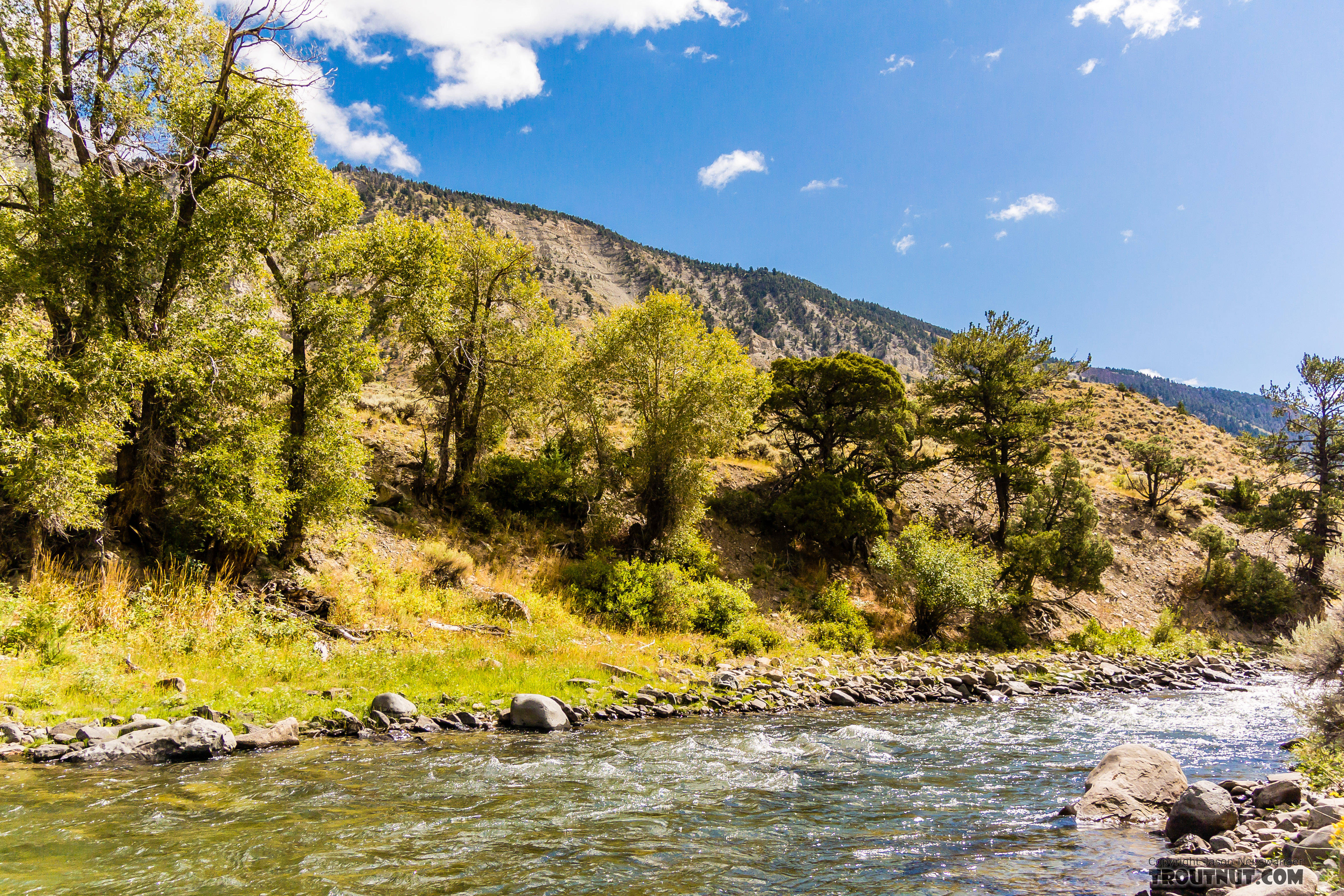 From the Gardner River in Montana.