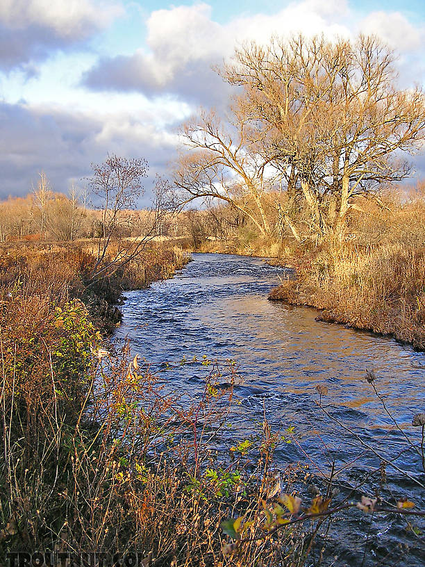 This little Lake Ontario tributary looked beautiful in mid-November, but I found no lake run fish. From Little Sandy Creek in New York.
