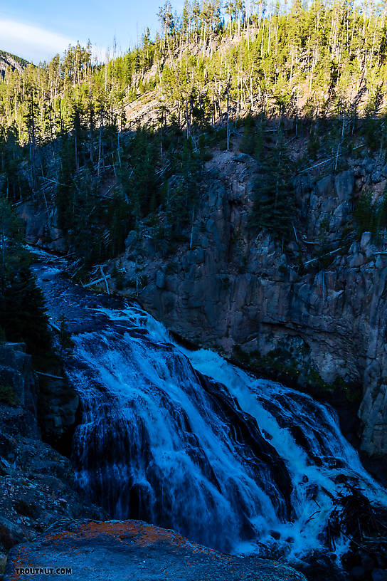 From the Gibbon River in Wyoming.