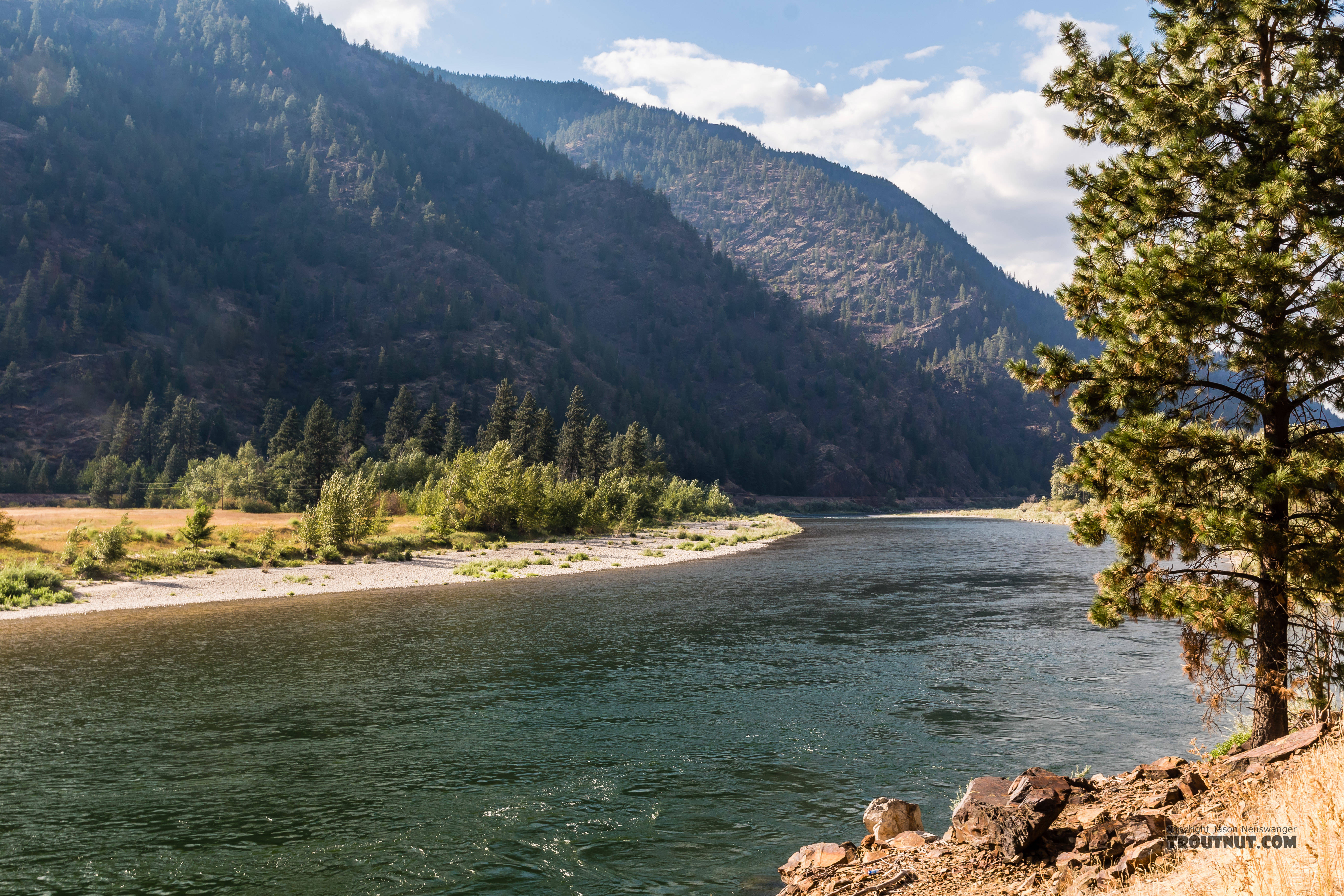 From the Clark Fork River in Montana.