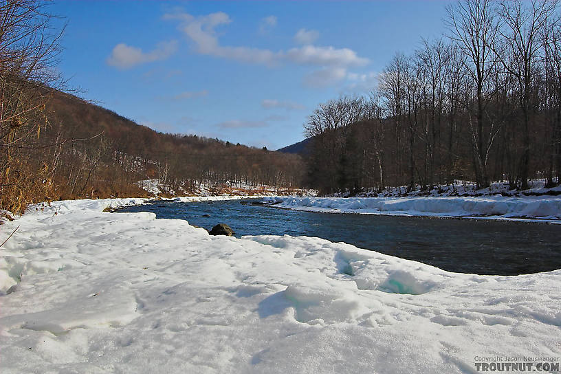 Deep snow melts away from a storied Catskill river as spring nears. From the Beaverkill River in New York.