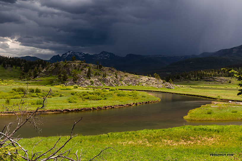 We were lucky to be able to fish through this storm as it skirted around us to the north, giving us just enough clouds to prompt a BWO hatch but keeping the lighting at a safe distance. From Slough Creek in Wyoming.