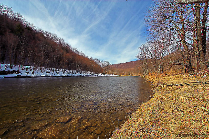 This is Cairn's Pool on the Beaverkill, possibly the most famous pool in all of trout fishing. From the Beaverkill River in New York.