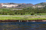 From Slough Creek in Wyoming.
