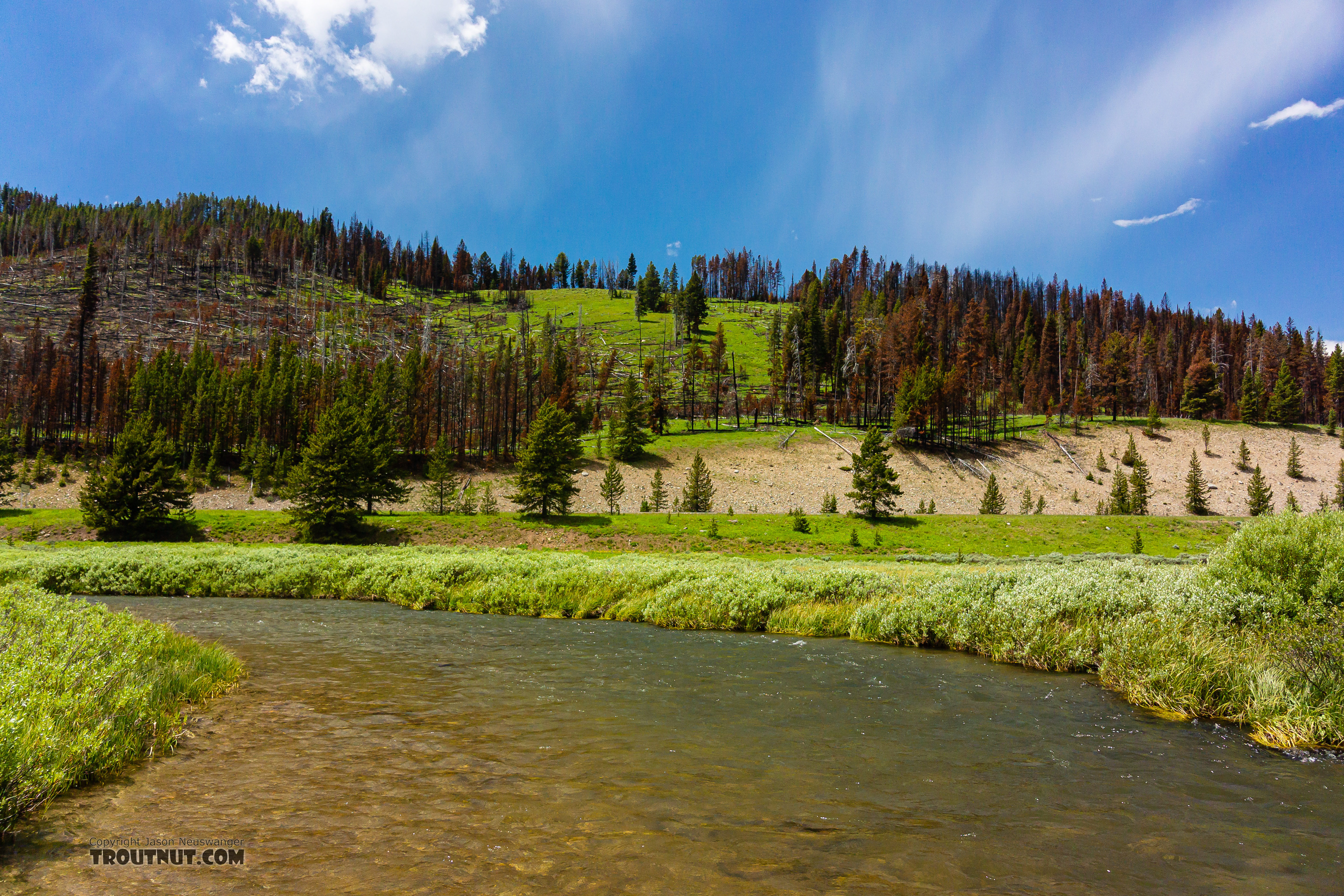 From the Gallatin River in Montana.