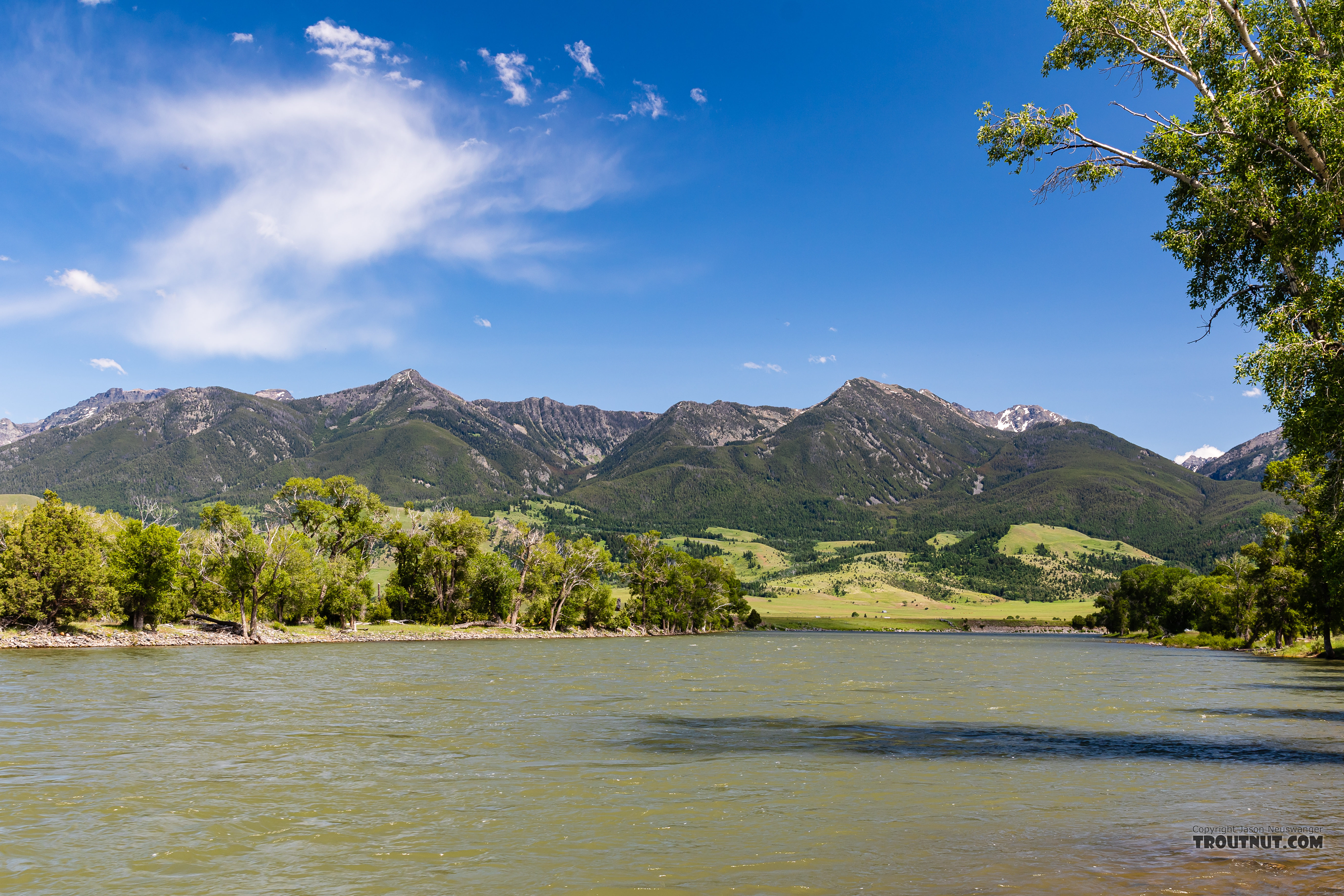 Yellowstone River at Mallard's Rest in Paradise Valley From the Yellowstone River in Montana.
