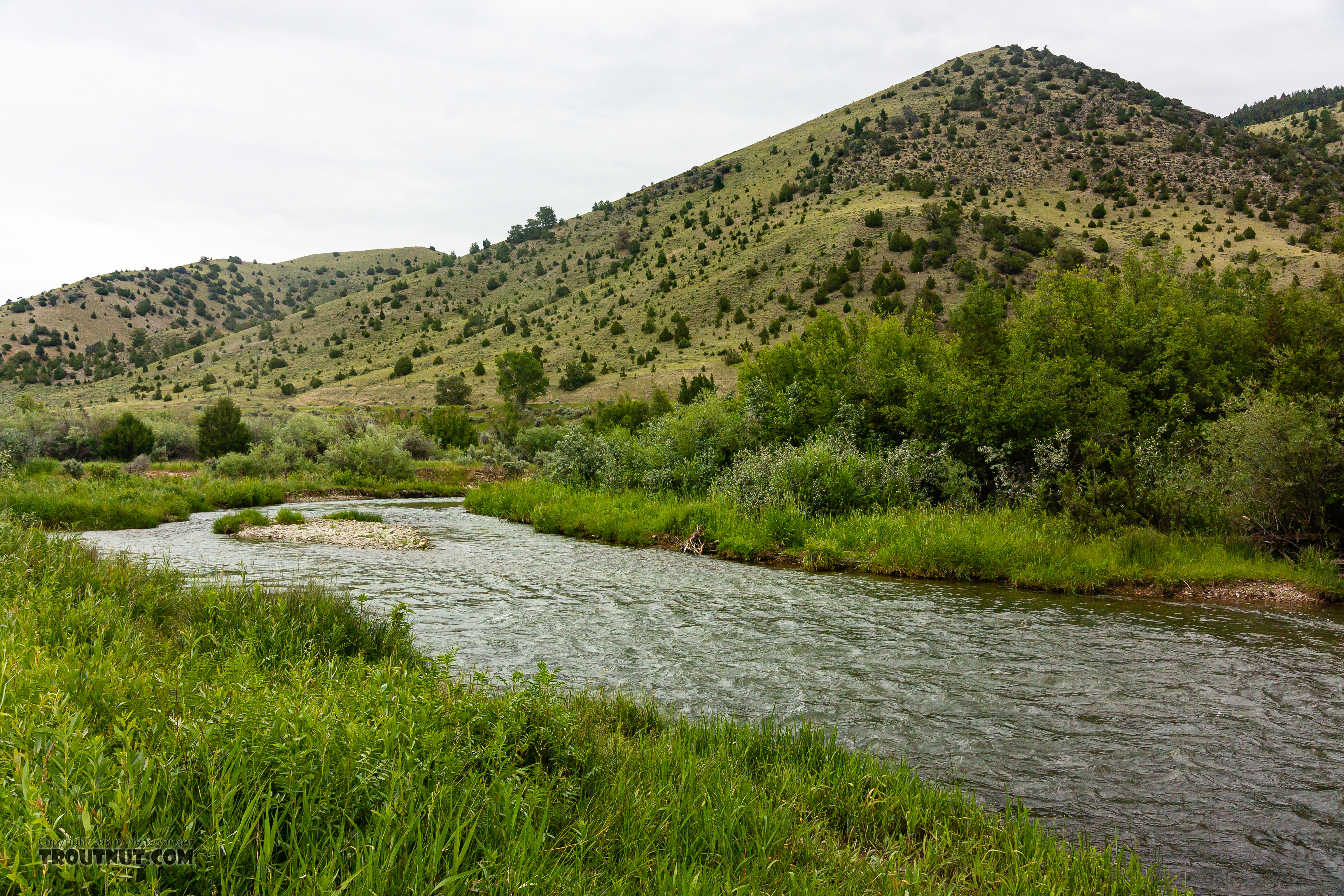 From the Ruby River in Montana.