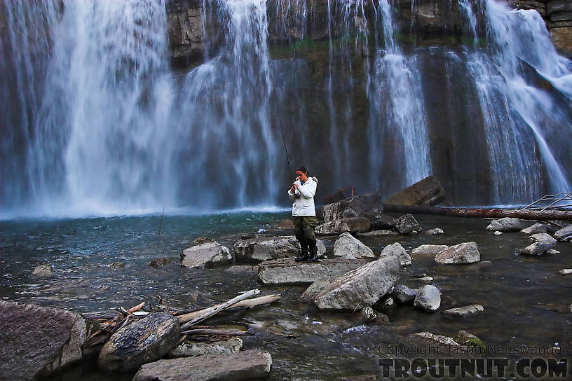 My girlfriend prepares to cast into a deep waterfall pool. From Salmon Creek, Ludlowville Falls in New York.