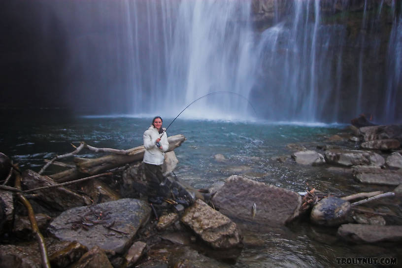 My girlfriend holds her first trout up.  The photo's blurry because the lens is covered with mist from the waterfall. From Salmon Creek, Ludlowville Falls in New York.