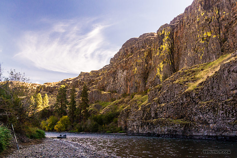 From the Yakima River in Washington.