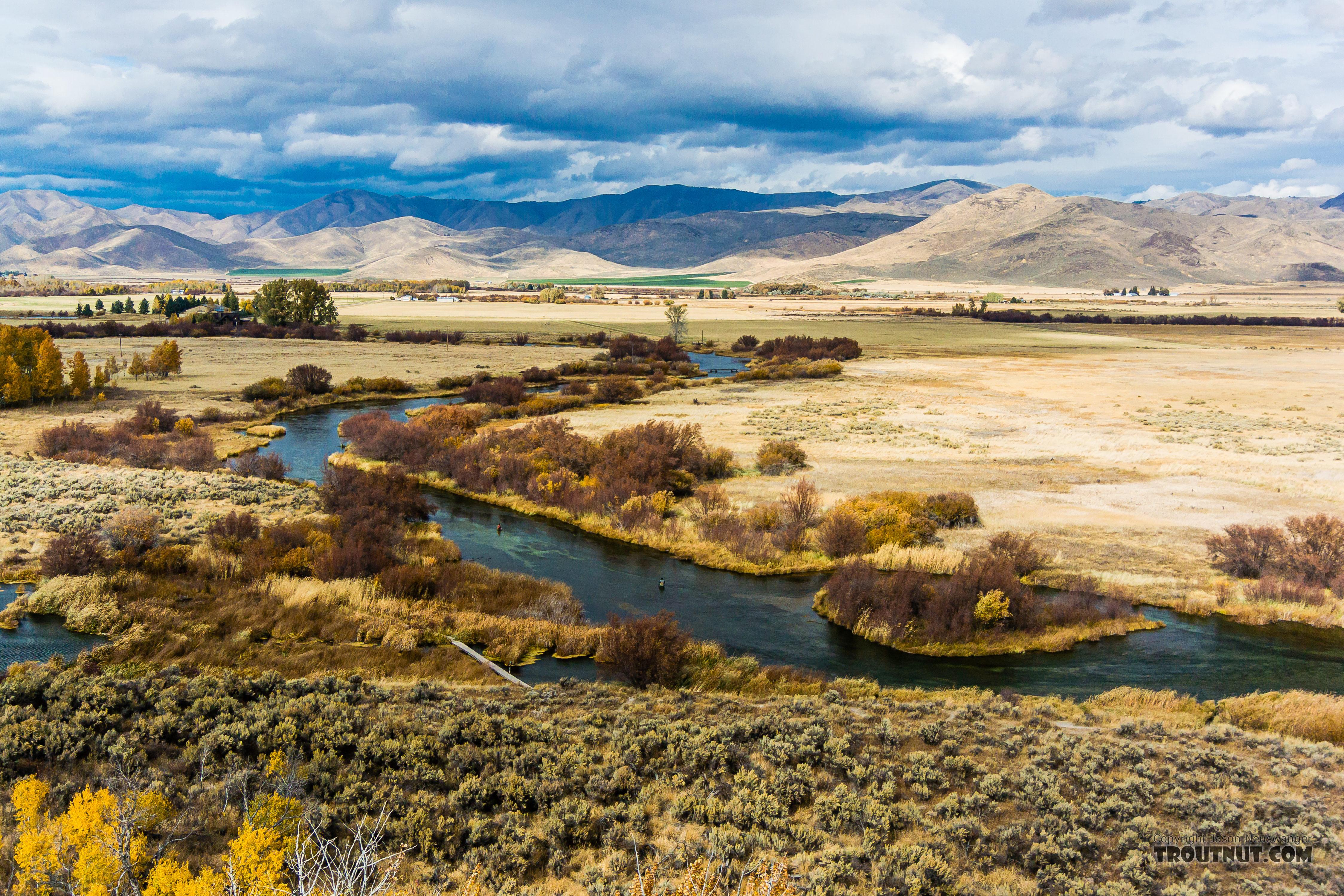 From Silver Creek in Idaho.