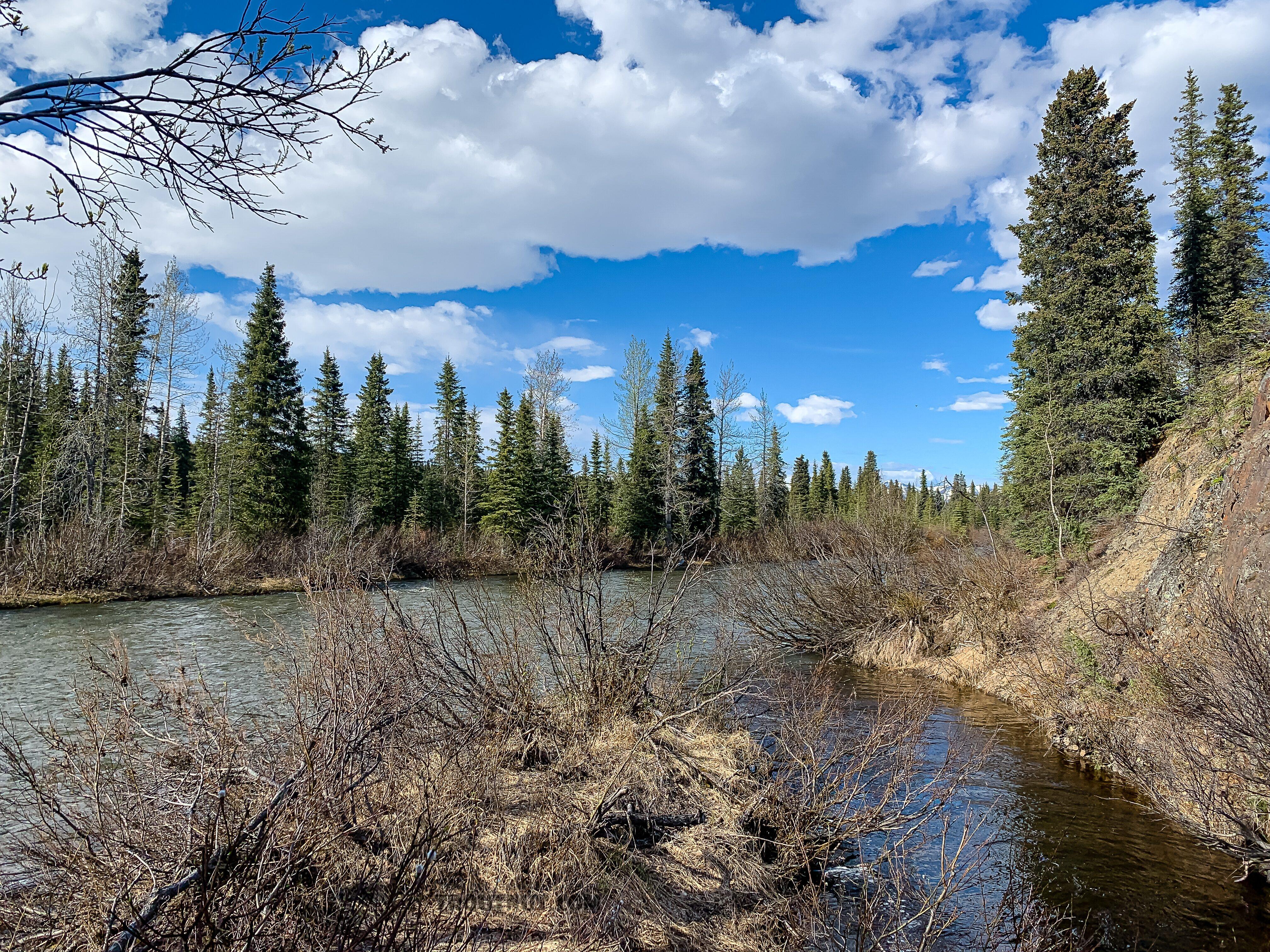 From Mystery Creek # 252 in Alaska.