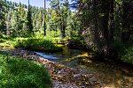 From Mystery Creek # 256 in Idaho.
