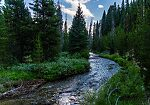 From Valley Creek in Idaho.