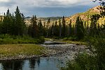From the Yankee Fork Salmon River in Idaho.
