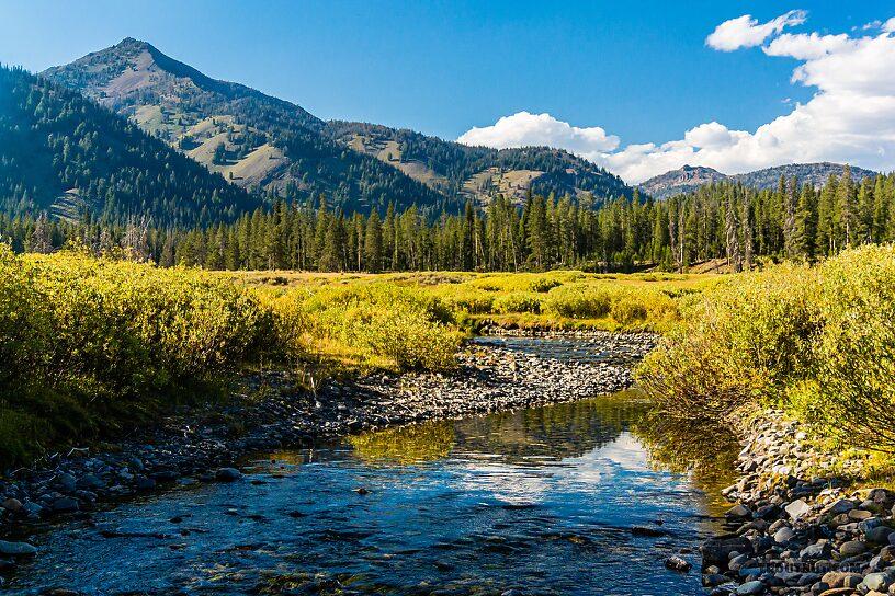 From Trail Creek in Idaho.