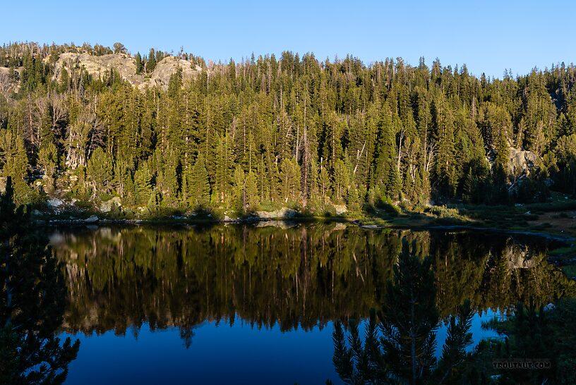 From Hobbs Lake in Wyoming.