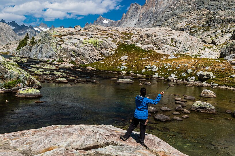 Casting in the Titcomb Basin outlet stream From Titcomb Basin in Wyoming.