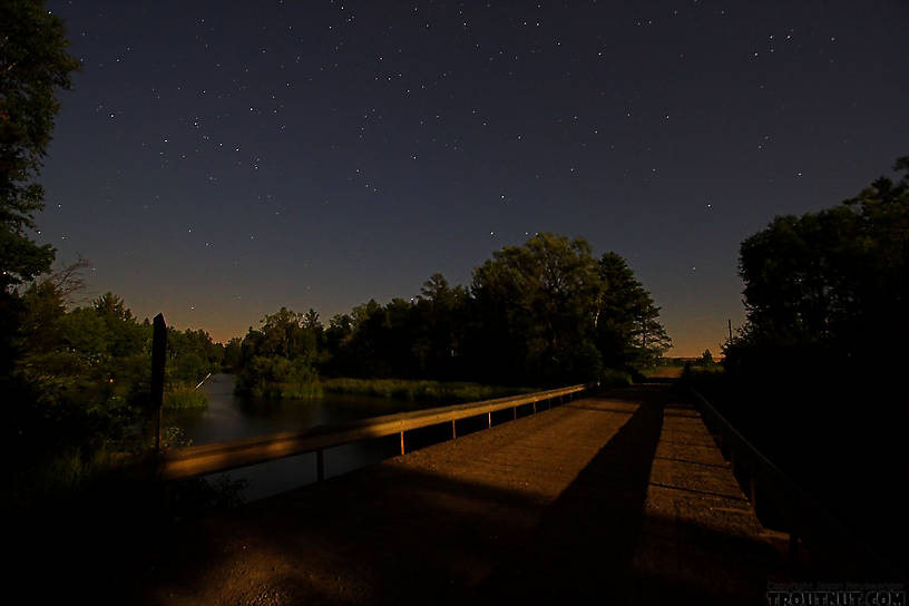 The moon lights a bridge under the stars near midnight over a nice trout river. From the Namekagon River in Wisconsin.