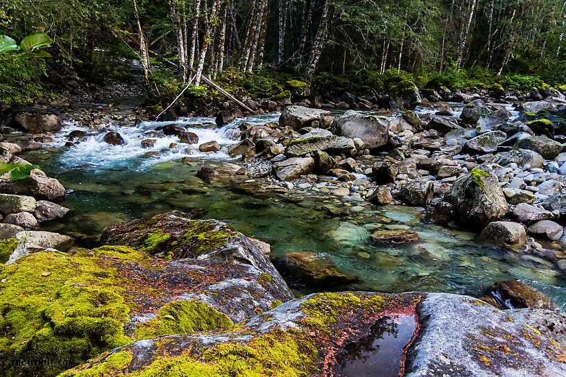 From the Middle Fork Snoqualmie River in Washington.