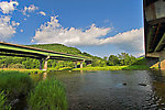 From the East Branch of the Delaware River in New York.
