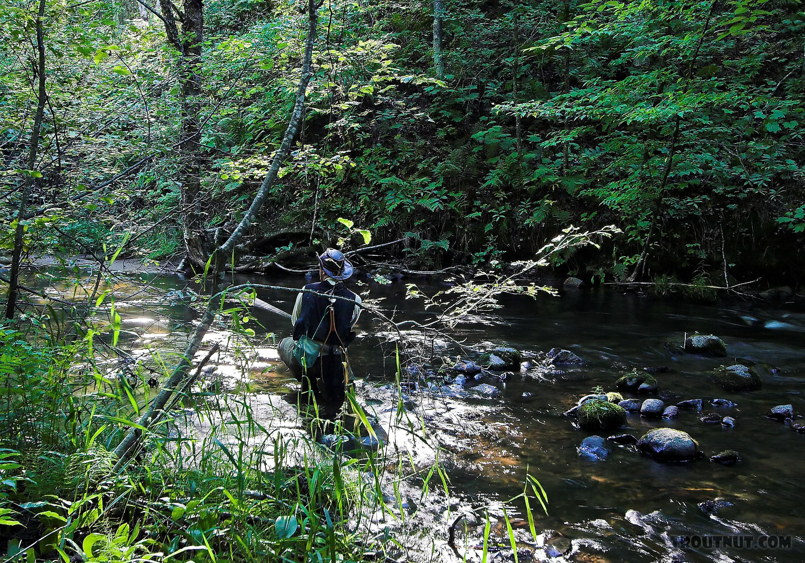 I'm kneeling low in this picture to avoid spooking wary small-stream trout.  It's important to blend into the background. From the Long Lake Branch of the White River in Wisconsin.