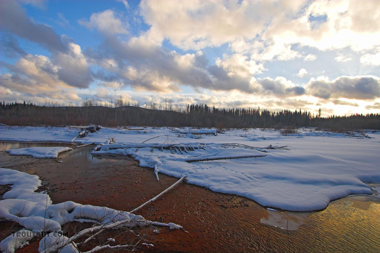 This is not a sunset picture, but a midday picture in Alaska in the winter.  The sun is low in the sky all day at that time of year. From the Chena River in Alaska.