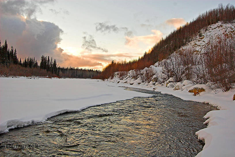 The high gradient kept this stretch of the river open despite the frigid winter temperature in central Alaska. From the Chena River in Alaska.
