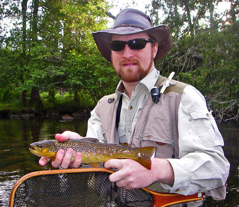 This fun little brown trout was one of many caught during an evening of excellent caddisfly activity. From the Bois Brule River in Wisconsin.