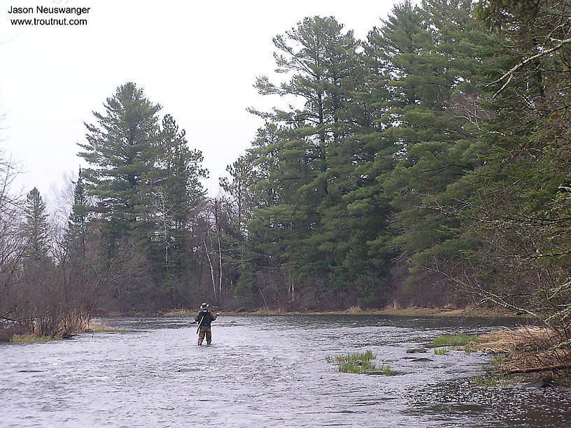 I'm in this picture casing into the riffle above one of my favorite pools.  The fishing was fine, but the catching wasn't so hot.  I got one strike on my carefully tied nymphs and two on my cheap foam strike indicator. From the Namekagon River in Wisconsin.