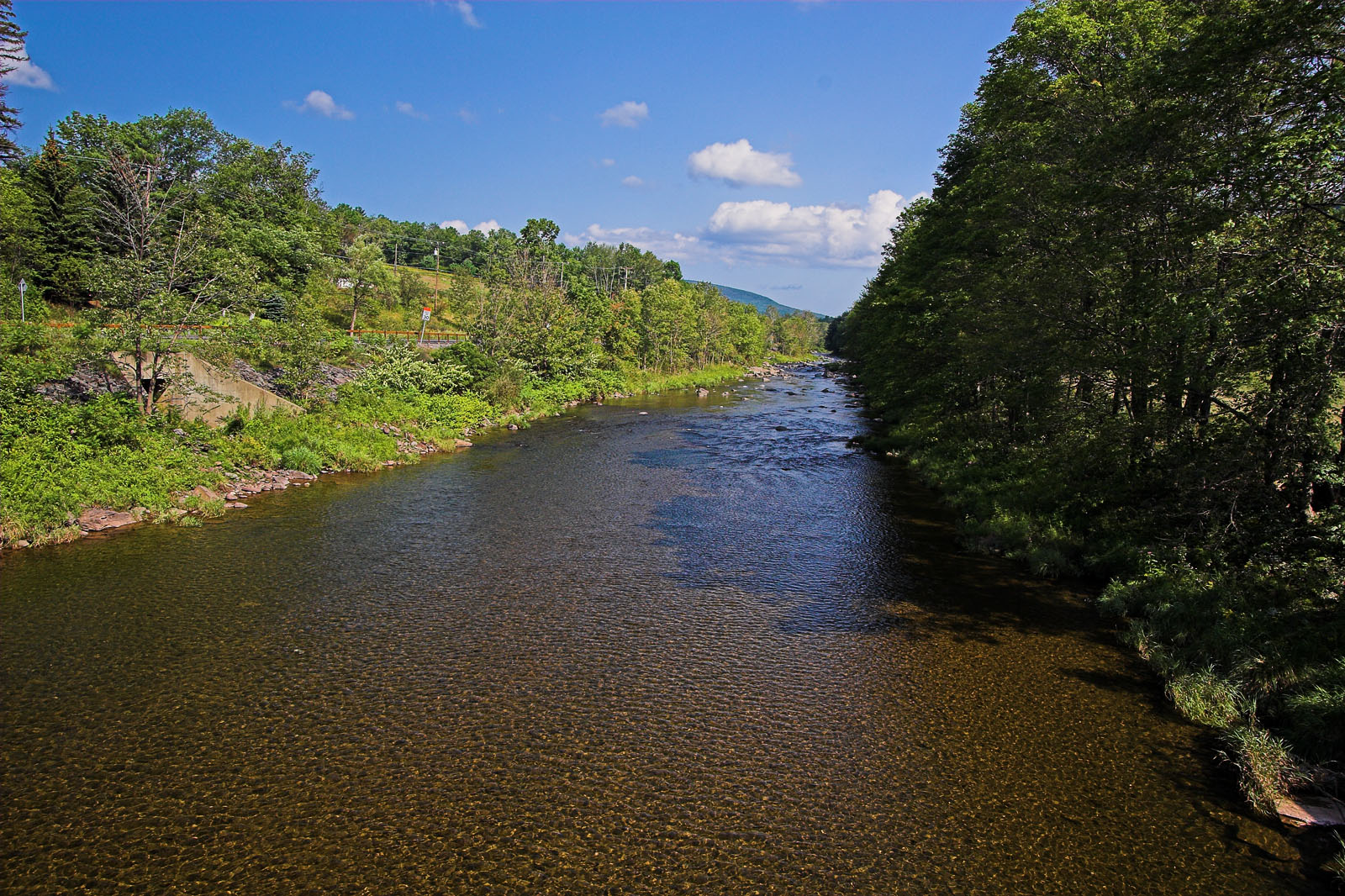 From Schoharie Creek in New York.