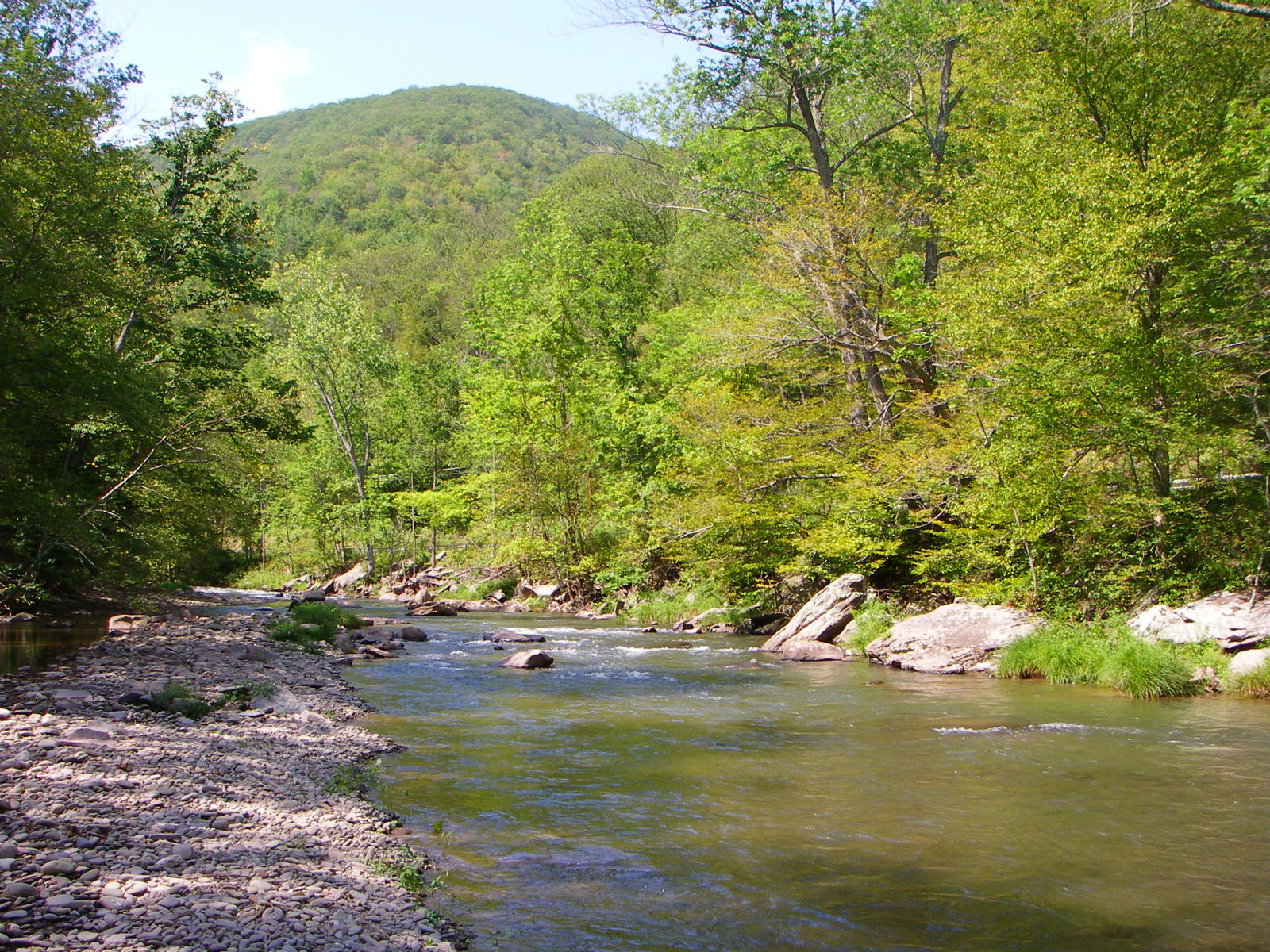 From Esopus Creek in New York.