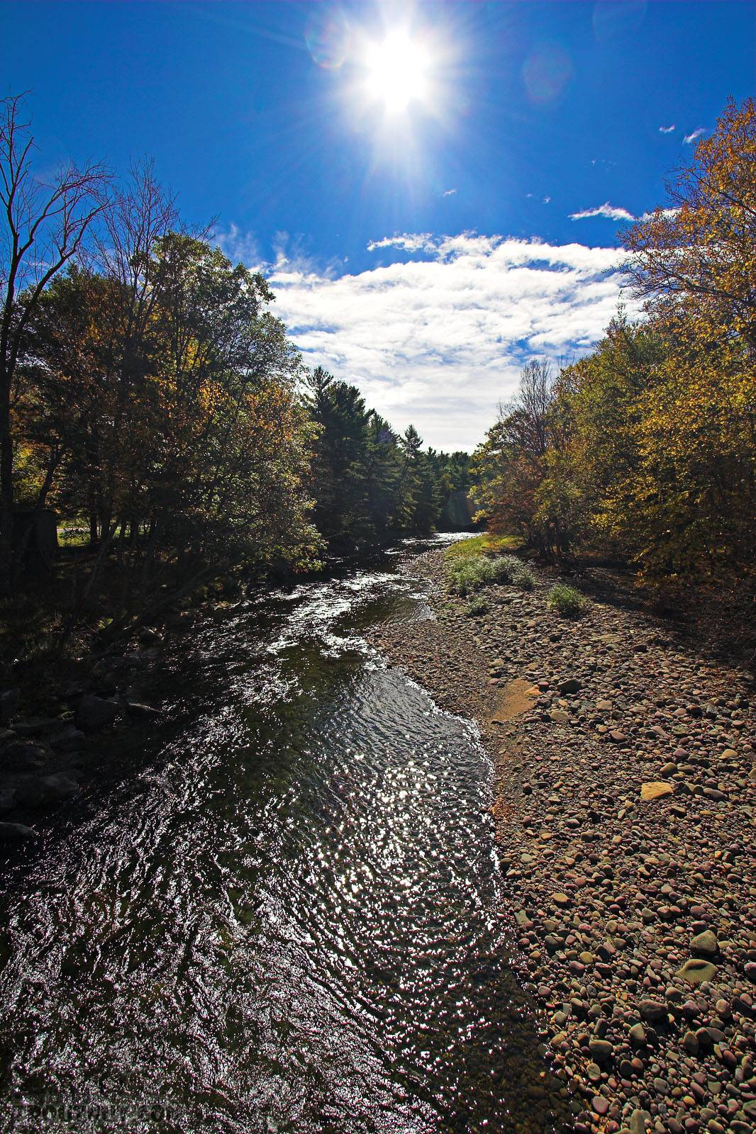 From the West Branch of the Neversink River in New York.
